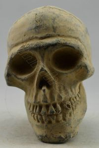 Bronze Skull on Ebay