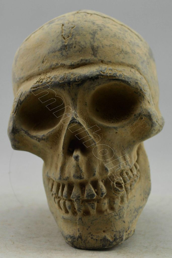 Bronze skull- one of many- taken graves- the dust of ages still covering it as it is sold for pennies on Ebay.