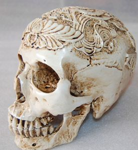 Another Tibetan resin skull advertised as