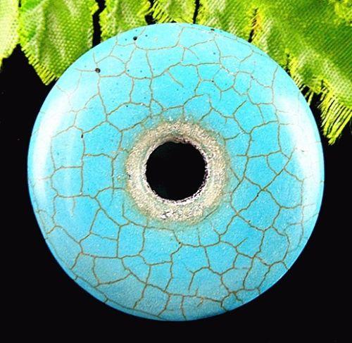 turquoisebida